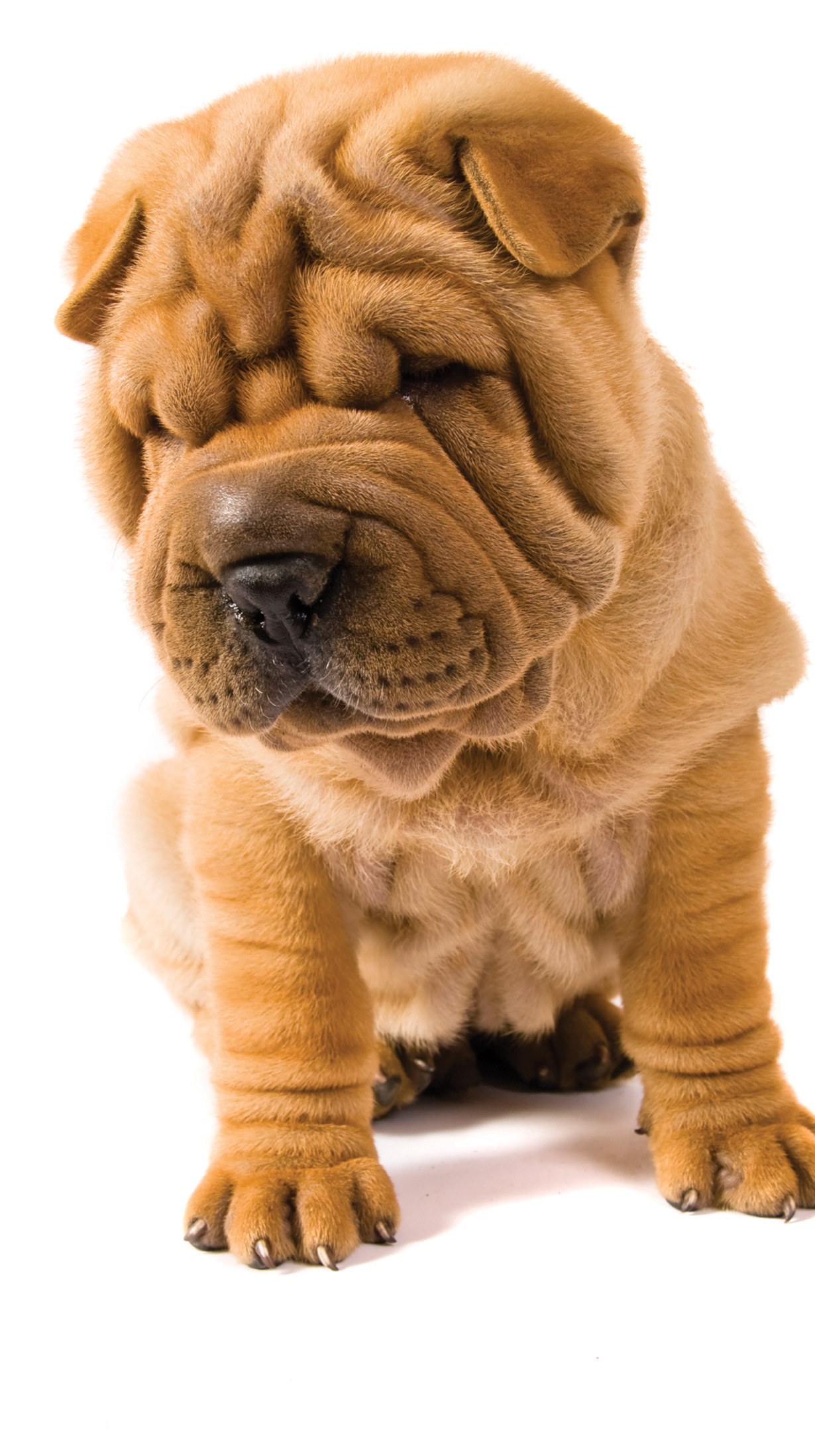 EyeOne Specialty Procedure for Wrinkles